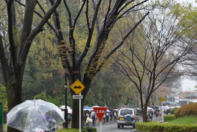 宗澤忠雄の「福祉の世界に夢うつつ」2012年4月16日