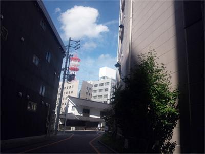 wada_1015_11.jpg